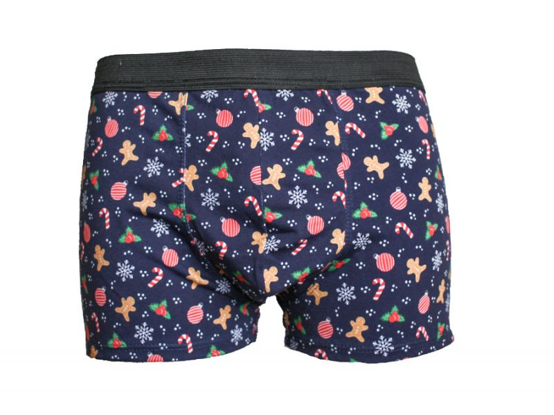 Christmas boxers briefs